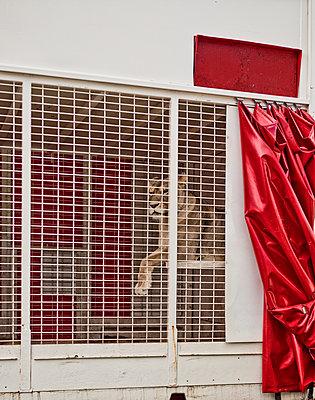 Löwin im Käfig - p318m1477386 von Christoph Eberle