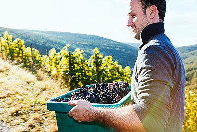 Im Weingebiet - p1271m1540306 von Maurice Kohl