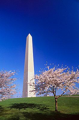 Washington Monument - p44210754f by Bilderbuch