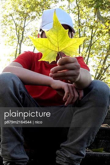 Boy behind maple leaf - p879m2164544 by nico