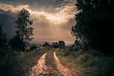 Dirt road lit by a glimpse of light before the rain - p1255m1558700 by Kati Kalkamo
