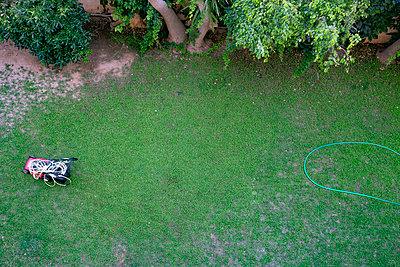 Lawn mower and garden hose in the garden - p1484m2217603 by Céline Nieszawer
