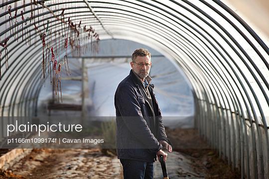 p1166m1099174f von Cavan Images