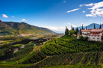 Winery - p1088m2116314 by Martin Benner