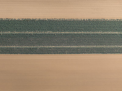 Aerial view brown and green agricultural crops, Hohenheim, Baden-Wuerttemberg, Germany - p301m2018020 by Stephan Zirwes