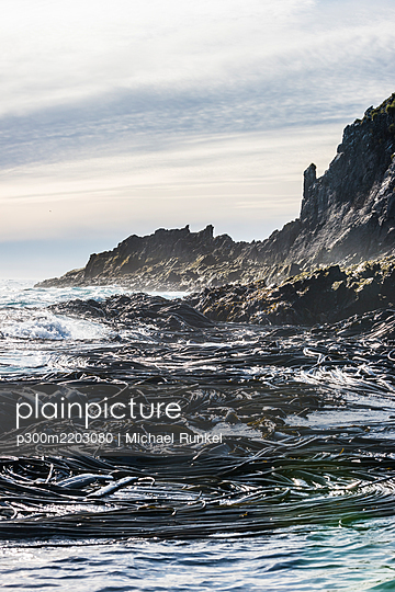 UK, South Georgia and South Sandwich Islands, Rugged coastline of Prion Island - p300m2203080 by Michael Runkel