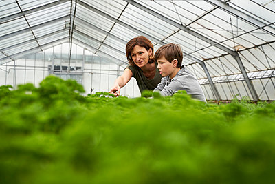 Mother and son crouching in greenhouse, examining herbs - p300m2197362 by Stefanie Aumiller