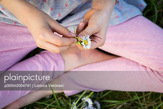 Hands of l ittle girl sitting on a meadow holding daisy, close-up - p300m2004741 von Larissa Veronesi