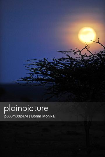 Vollmond über der Masai Mara - p533m982474 von Böhm Monika