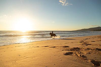Spain, Tarifa, woman riding horse on the beach at sunset - p300m2080881 by Sebastian Kanzler