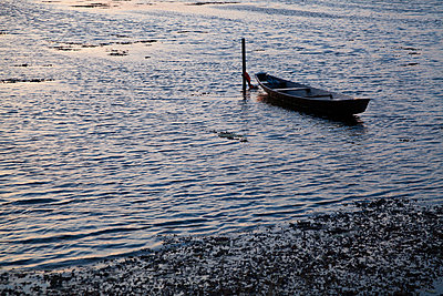 Little boat - p993m877366 by Sara Foerster