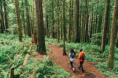 A young couple enjoys a hike in a forest in the Pacific Northwest. - p1166m2171931 by Cavan Images