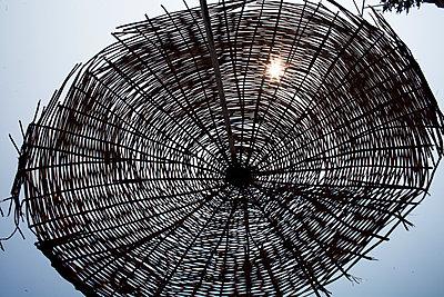 Sonnenschirm - p1386m1441260 von beesch