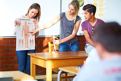 Students holding an anatomical presentation in classroom - p300m975605f by zerocreatives