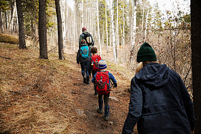 Family hiking woods - p1192m2094160 by Hero Images