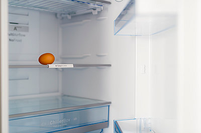 One brown egg in open fridge - p300m1023530f by Frank Röder