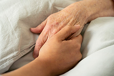 Home carer holding a patient's hand - p623m2164974 by Frederic Cirou