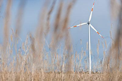Windkraftanlage im Kornfeld - p1079m1042136 von Ulrich Mertens