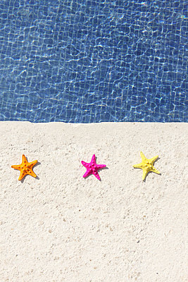 Colourful Starfishes - p045m813490 by Jasmin Sander