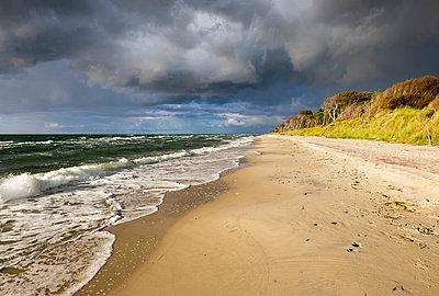 Germany, Mecklenburg-Western Pomerania, Baltic Sea beach in Born auf dem Darss - p300m1101271f by Martin Siepmann