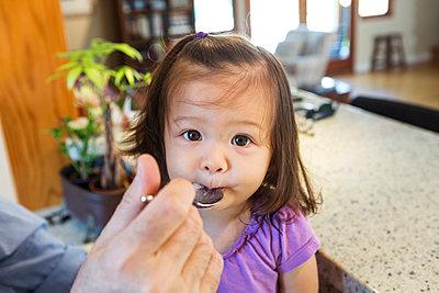 Father feeding daughter in kitchen - p555m1420319 by Sam Diephuis