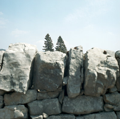 Trees behind a wall from natural stones - p1468m1558912 by Philippe Leroux