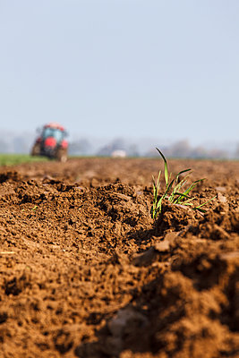 Ploughing - p110m1087315 by B.O.A.