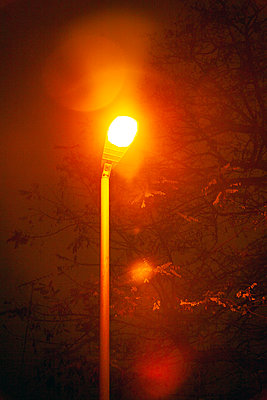 Lamplight at Night - p1248m2230288 by miguel sobreira