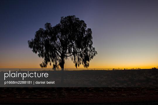Morning mood - p1668m2288181 by daniel belet