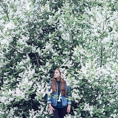 Flowers - p1507m2028283 by Emma Grann