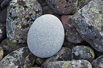 p816m744995 von Bjørn Jørgensen