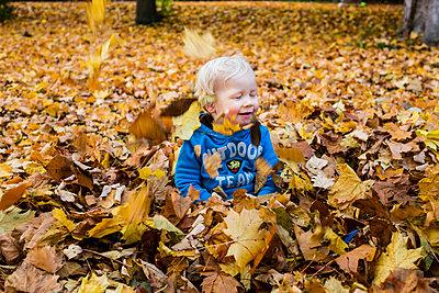 Kleiner Junge spielt im Herbstlaub - p1046m1138189 von Moritz Küstner