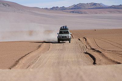 Altiplano 1 - p1217m1146063 von Andreas Koslowski