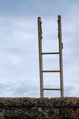 Single ladder - p1228m1223371 by Benjamin Harte