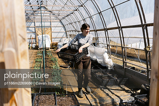 A young female farmer working in green house in the morning in spring - p1166m2269686 by Cavan Images