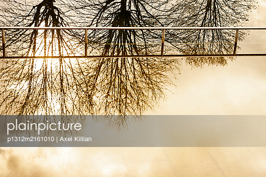 Railing of a bathing lake treetops reflected in water - p1312m2161010 by Axel Killian
