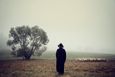 Sheepherder - p992m946131 by Carmen Spitznagel