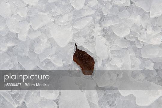 Eingefroren - p5330427 von Böhm Monika