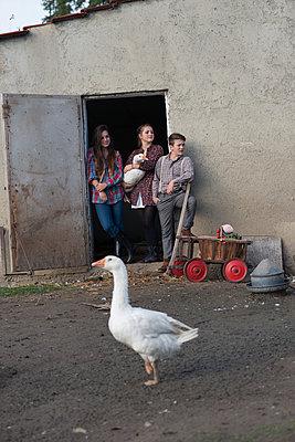 Farmhouse holidays - p1437m1502326 by Achim Bunz