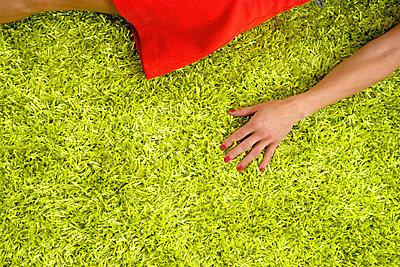 Lie down - p427m865334 by R. Mohr