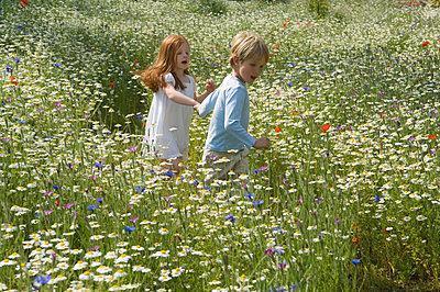 Children walking in field of flowers - p42916335f by Henry Arden