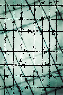 Barbed wire - p1228m1503695 by Benjamin Harte