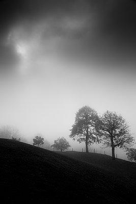 Mystical light - p1682m2278070 by Régine Heintz