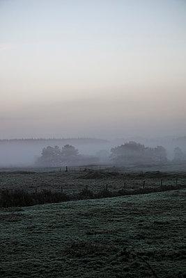 Misty Landscape Ireland  - p1082m2038627 by Daniel Allan