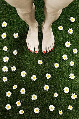 Nackte Frauenfüsse auf einer Blumenwiese - p1574m2147969 von manuela deigert
