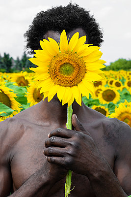Dark-skinned man with sunflower in front of his face, portrait - p975m2203345 by Hayden Verry