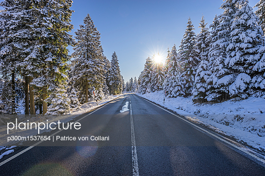 Germany, Lower Saxony, Harz National Park,  country road in the morning - p300m1537654 by Patrice von Collani