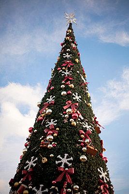 Weihnachtsbaum einmal anders - p5960078 von Ariane Galateau