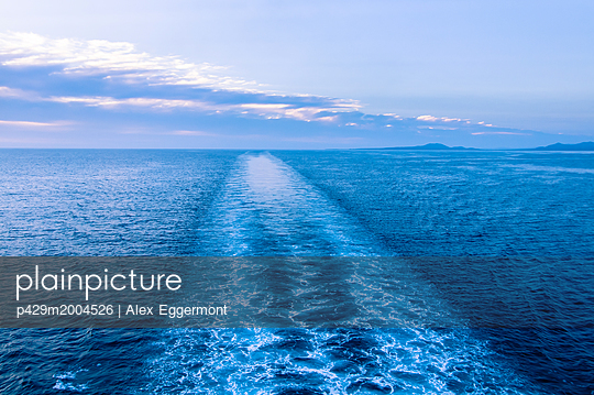 p429m2004526 von Alex Eggermont