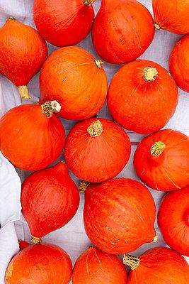 Orangener Herbst - p454m2052766 von Lubitz + Dorner